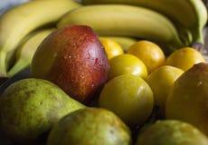 Vruchten - assortiment van verse vruchten, het concept van het gewichtsverlies royalty-vrije stock foto