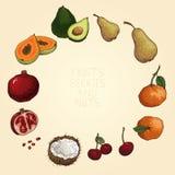 Vruchten, bessen en noten Royalty-vrije Stock Afbeeldingen