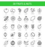 Vruchten, bessen & noten Veganist & vegetarisch voedsel Het gezonde Eten stock illustratie