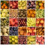 Vruchten collagen van 25 beelden Stock Foto
