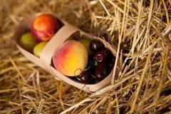 Vruchten in de mand Stock Fotografie
