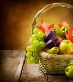 Vruchten in de Mand Stock Afbeeldingen