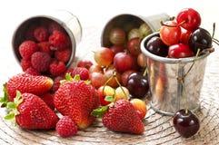 Vruchten en bessen royalty-vrije stock afbeelding