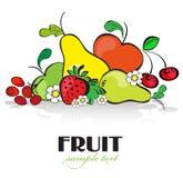Vruchten en Bessen Royalty-vrije Stock Foto's
