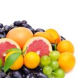Vruchten en bessen Stock Foto's