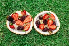 Vruchten en bessen, aardbeien, braambessen in kokosnoot Op het groene gras royalty-vrije stock afbeelding