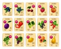 Vruchten en bessen op prijs of verkoopmarkering, kaart vector illustratie