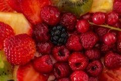 Vruchten en bessen in zoete gelatine op de cake Achtergrond van aardbeien, kiwi, bessen, framboos, ananas, braambes royalty-vrije stock afbeelding