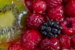 Vruchten en bessen in zoete gelatine op de cake Achtergrond van aardbeien, kiwi, bessen, framboos, braambes royalty-vrije stock foto