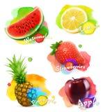 Vruchten en bessenillustratie royalty-vrije illustratie