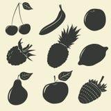 Vruchten en bessenpictogrammen - vectorillustratie vector illustratie