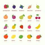 Vruchten en bessenpictogramreeks stock afbeelding