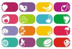 Vruchten en geplaatste bessen vectoretiketten Stock Afbeelding