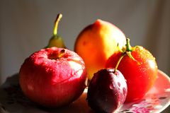 Vruchten en groente op een plaat bij zijzonlicht Stock Afbeeldingen