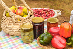 Vruchten en groenten bij een dorpsmarkt Stock Fotografie
