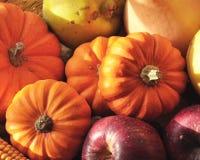 Vruchten en groenten in seizoen Royalty-vrije Stock Foto's