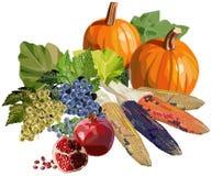 Vruchten en groenten voor Dankzegging Royalty-vrije Stock Fotografie
