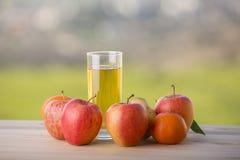 Vruchten en sap Stock Afbeelding