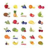 Vruchten geplaatste illustraties Royalty-vrije Stock Afbeeldingen