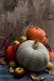 Vruchten, graan en pompoenen Stock Foto's