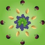 Vruchten lagen Stock Foto