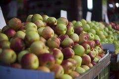Vruchten markt Hadera Israël Royalty-vrije Stock Afbeeldingen