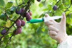 Vruchten met kunstmatige kleur worden gekleurd die Stock Afbeelding