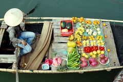 Vruchten op boot Stock Foto's