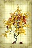 - - Vruchten op bruin hooi worden geplaatst dat Royalty-vrije Stock Foto's
