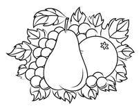Vruchten in retro stijl Royalty-vrije Stock Foto