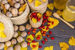 Vruchten van de herfst stock foto's