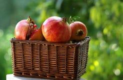 Vruchten van de Herfst Stock Foto