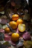 Vruchten van de herfst, dadelpruim Royalty-vrije Stock Foto