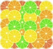 Vruchten van een sinaasappel, een citroen, een grapefruit en een kalk Royalty-vrije Stock Afbeelding