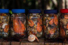 Vruchten van het overzees aan de vinaigrette in de Venezolaanse Caraïben Stock Foto