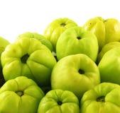 Vruchten van kweeperen stock fotografie