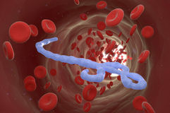 Vírus de Ebola Fotografia de Stock Royalty Free
