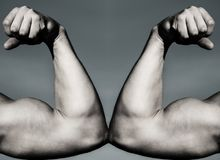 Vs. Fight hard. Health concept. Hand, man arm, fist. Muscular hand vs strong hand. Competition, strength compariso royalty free stock photos