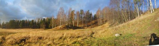 Vsevolozhsk, montagne de Rumbolovvskaya Image stock