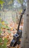 Västra akustisk gitarr i natur Arkivfoton