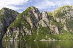 Västra bäckdamm Cliff Wall Royaltyfria Bilder