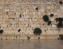 västra vägg Arkivbilder