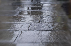 våt trottoar Royaltyfri Foto