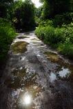 våt väg Arkivbild