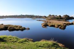 Våtmarker på det stora träsket Bunbury västra Australien i sen vinter. Arkivfoto