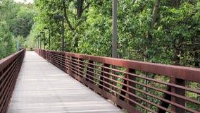 Vue à angles de la passerelle en bois dedans dehors avec des branches soufflant du vent banque de vidéos
