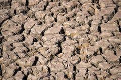 Vue à la terre avec les fissures et l'herbe Photos stock