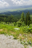 Vue à la vallée, haut Tatra, Slovaquie Images libres de droits