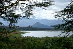 Vue à travers le lac Naivasha d'Elsamere Images stock