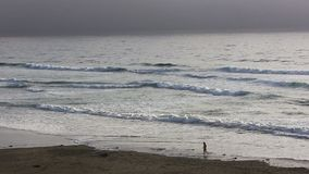 Vue éloignée de femme sur la plage de la Californie du nord clips vidéos